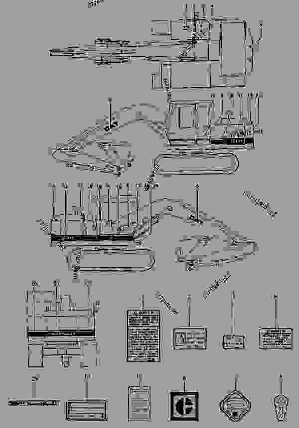 diagram caterpillar body parts