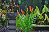 Our Australian Gardens  Tabu: Tropical Paradise in Cairns ...