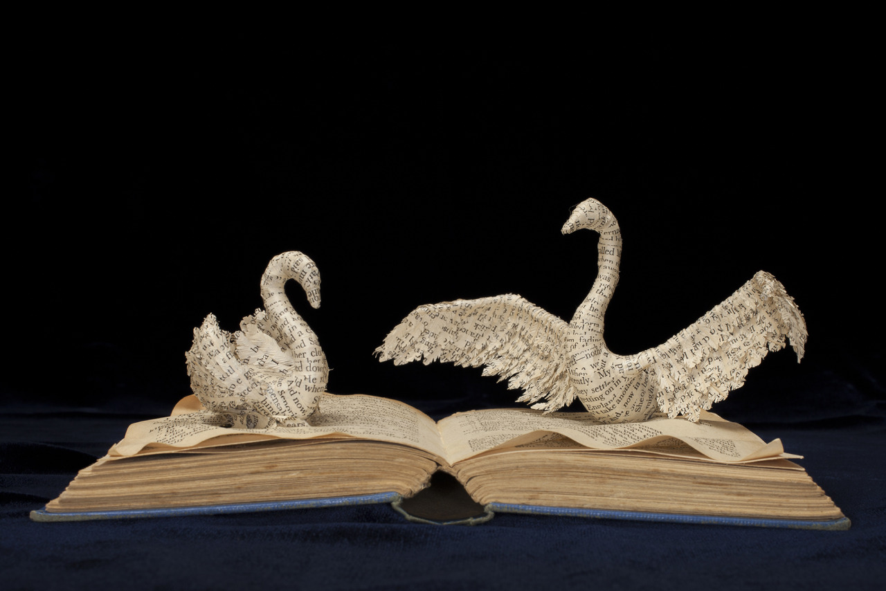 Paper Bird Sculpture From Within A Book Swan Song