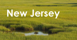 New Jersey, my current base of operations. New Jersey has it all!