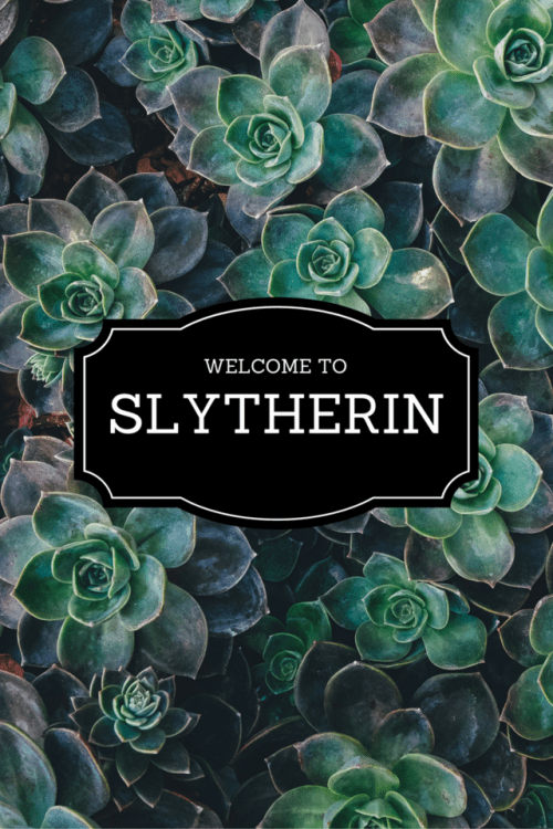 Sarcastic Wallpaper Quotes Welcome To Slytherin Tumblr