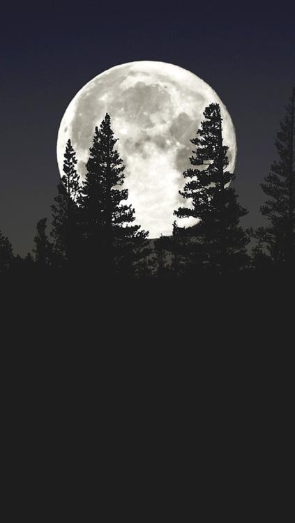 Fall Backgrounds Wallpaper At Night Moon Wallpaper Tumblr