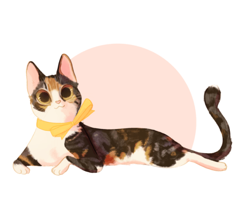 Black Cat Fall Wallpaper Calico On Tumblr
