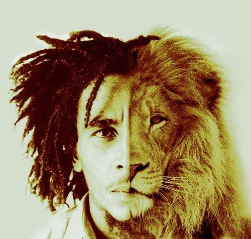 Wallpaper Cute Hipster Cat Lion Of Judah On Tumblr