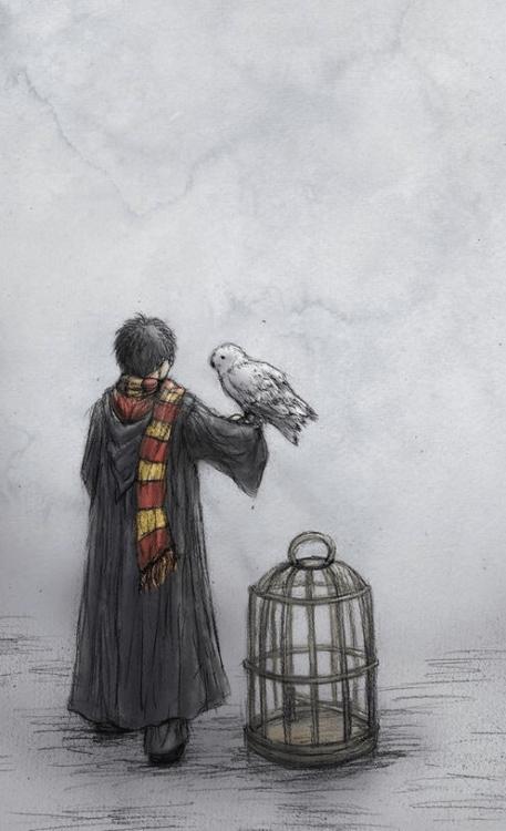Hufflepuff Wallpaper Iphone Papel De Parede De Harry Potter Tumblr