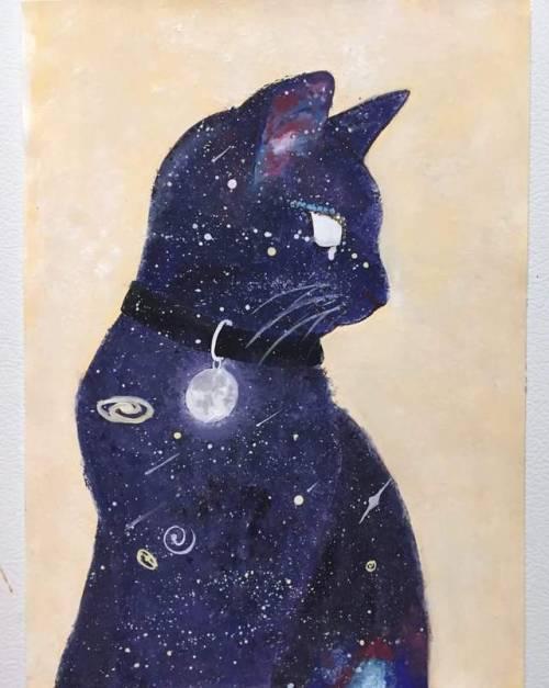Anime Girl With Cat Ears Wallpaper Gato Galaxy Tumblr