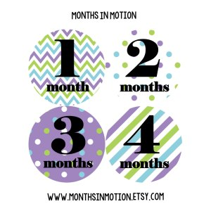 Splendid Monthly Baby Stickers Baby Month Stickers Baby Girl Month Stickers Monthlyphoto Stickers Monthly Milestone Stickers Monthly Baby Stickers Monthly Baby Stickers Baby Month Stickers