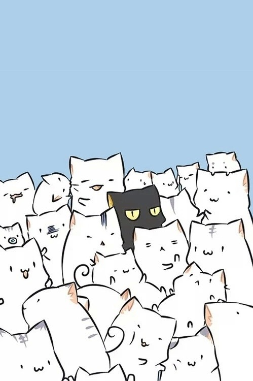 Don T Touch My Phone Wallpaper Cute Grumpy Cat Wallpaper Tumblr