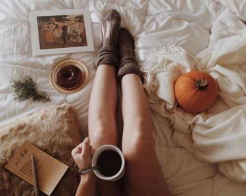 Hipster Fall Wallpaper Blankets On Tumblr