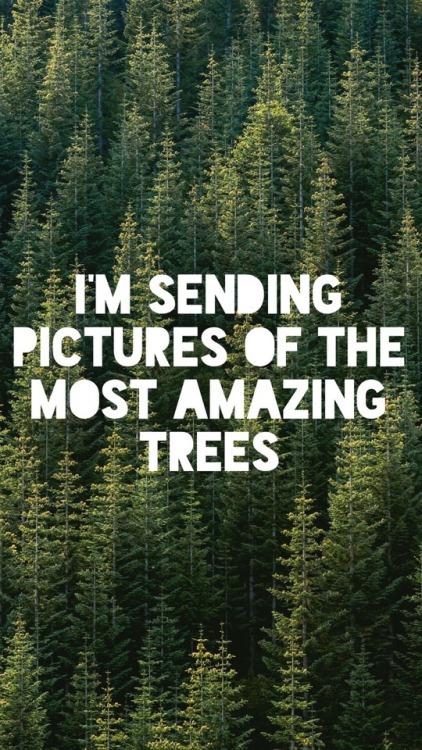 Dear Evan Hansen Quotes Wallpaper Deh Wallpaper Tumblr
