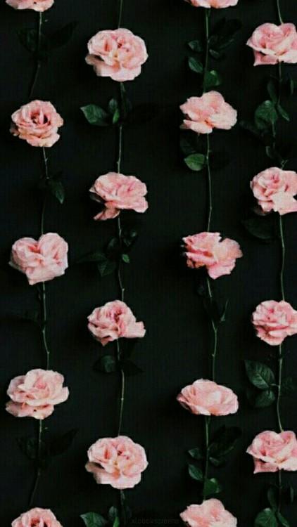 Cute Wallpapers We Heart Whatsapp Backgrounds Tumblr