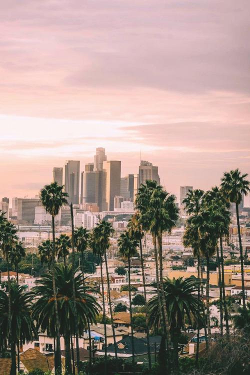 La Dodgers Iphone Wallpaper Los Angeles Wallpaper Tumblr