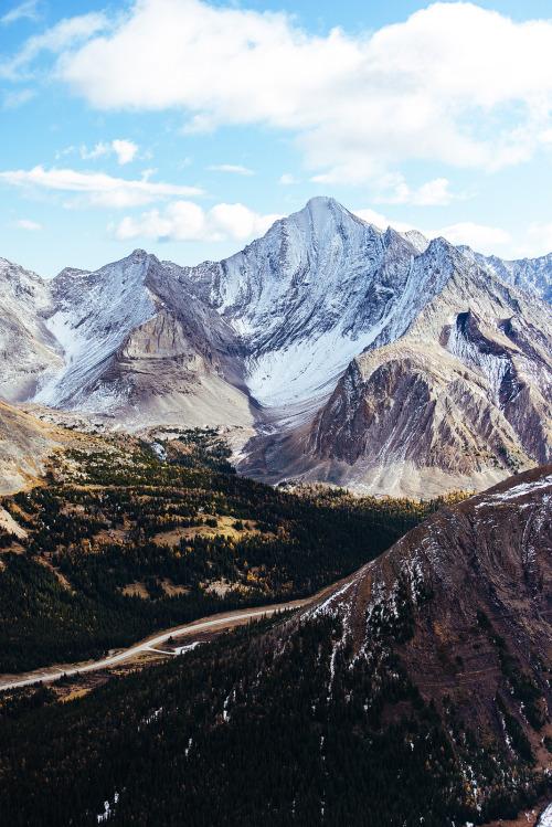 Fall Trees Wallpaper For Desktop Rocky Mountain Landscape Tumblr