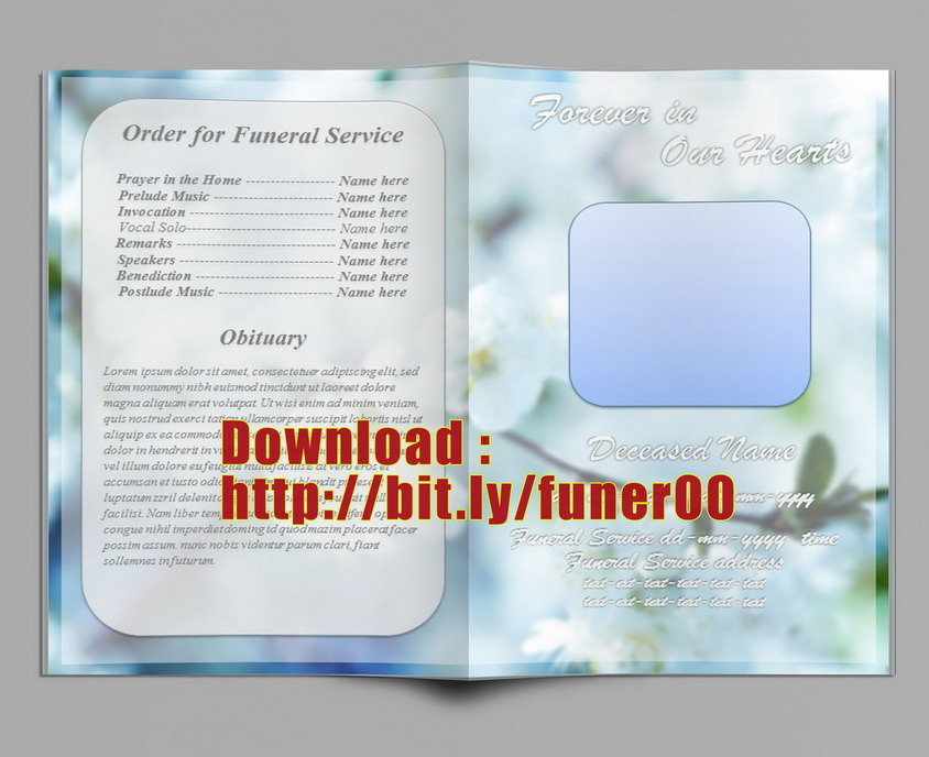 Free Funeral Program Templates - funeral program background