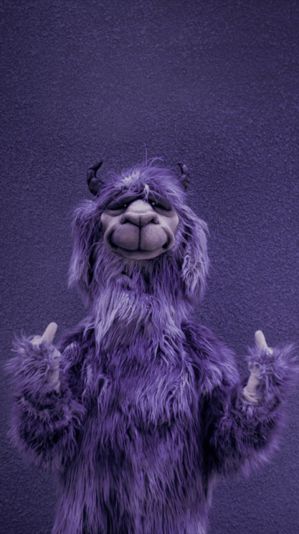 Fall Out Boy Wallpaper Mania Purple Llama Tumblr