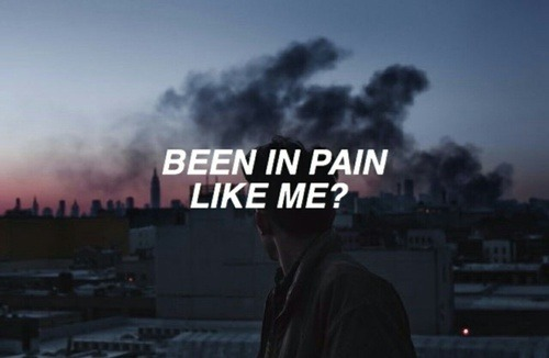 Halsey Wallpaper Quotes Halsey On Tumblr
