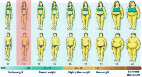 body fat percentages chart - Baruthotelpuntadiamante - body fat chart
