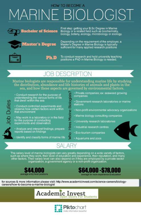 marine biology jobs Tumblr - marine biologist job description