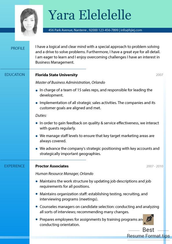 Best Resume Format Online \u2014 Resume sample 2016 - online resume samples