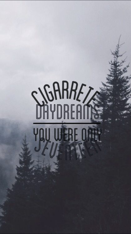 Halsey Wallpaper Quotes Cage The Elephant Quotes Tumblr