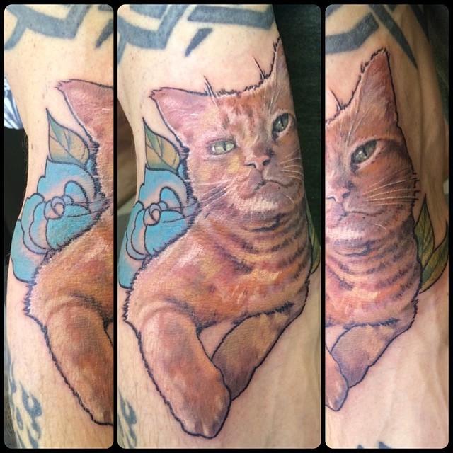 ditch-kitty-kitty-cattattoo-kittytattoo-meow