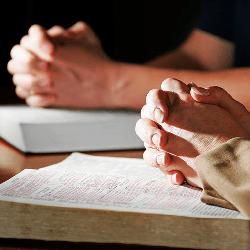 Seeking Together