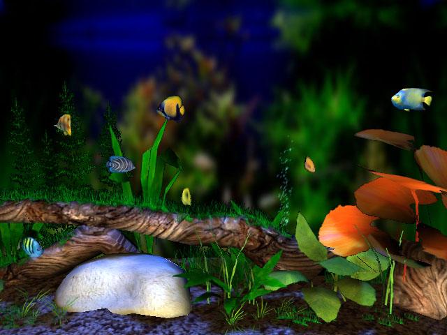 3D Bungalow Aquarium screensaver   the beautiful large aquarium.