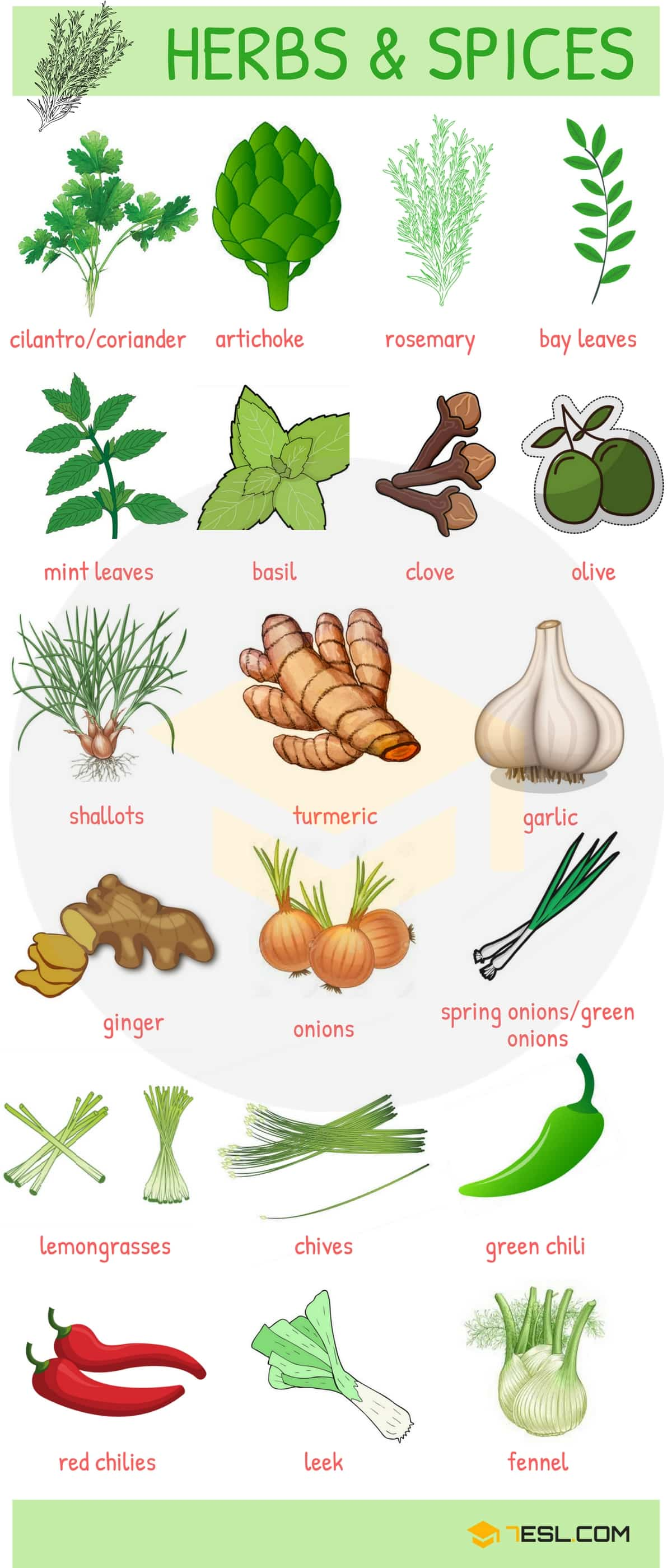 Cuisine Meaning English Fruits And Vegetables List Names And Pictures 7 E S L