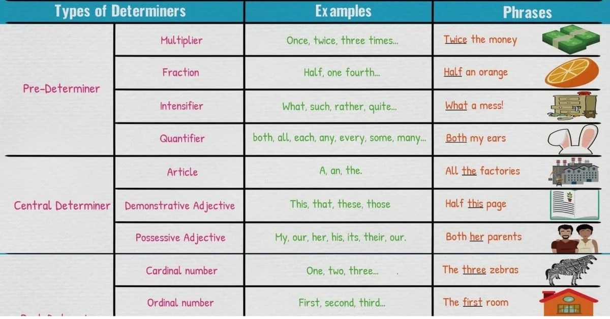 Determiners - Types of Determiners List, Definition, Examples - 7 - count and noncount nouns esl