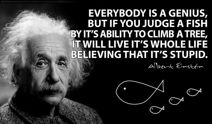 Wise Failure Quotes Wallpaper Albert Einstein Everybody Is A Genius But If You Judge