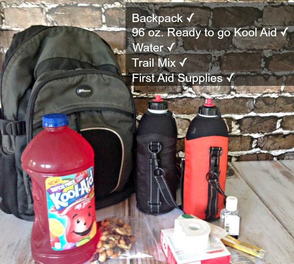 Grab A Sammie And A Kool Aid: 96 Oz. Ready-to-drink Kool-Aid A Juice Beverage For Active