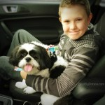 Petco Repeat Delivery program makes life easier.
