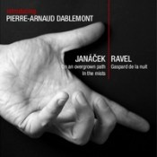 Pierre-Arnaud Dablemont: Introducing Pierre-Arnaud Dablemont