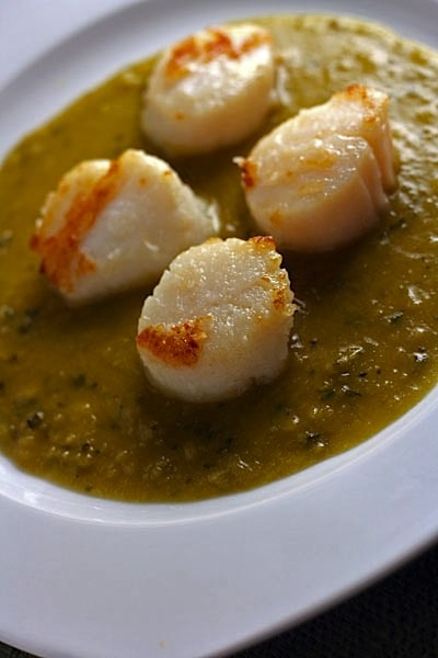 scallops-in-pea-sauce-2.jpg