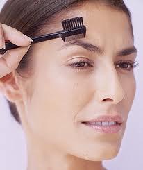Grooming Eyebrows