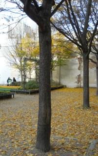 St. Gilles Garden 3