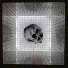 Modern Art Museum 21