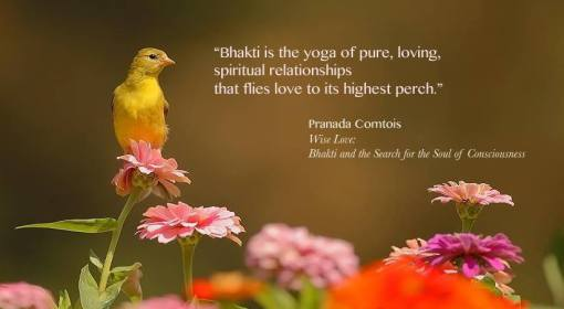 Bhakti Flies Love to its Highest Perch