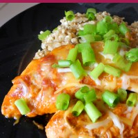 Enchilada Chicken (Crock Pot)