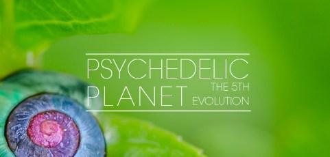 Traveler Installment 384 -Traveler's Psychedelic Planet (The Fifth Evolution)