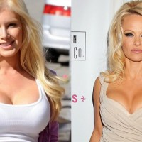 15 celebs with artificial boobs (Before and after pictures)