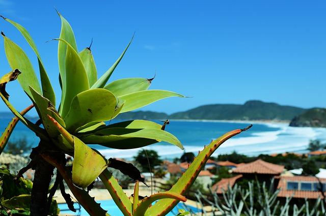 beach-667969_640