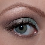 Too Faced Eyes Of The Day brun bleu 