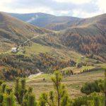 Vom Piffinger Köpfl zum Missensteiner Joch und Zurück – Eine Wanderung für Anfänger auf über 2000 Metern Höhe