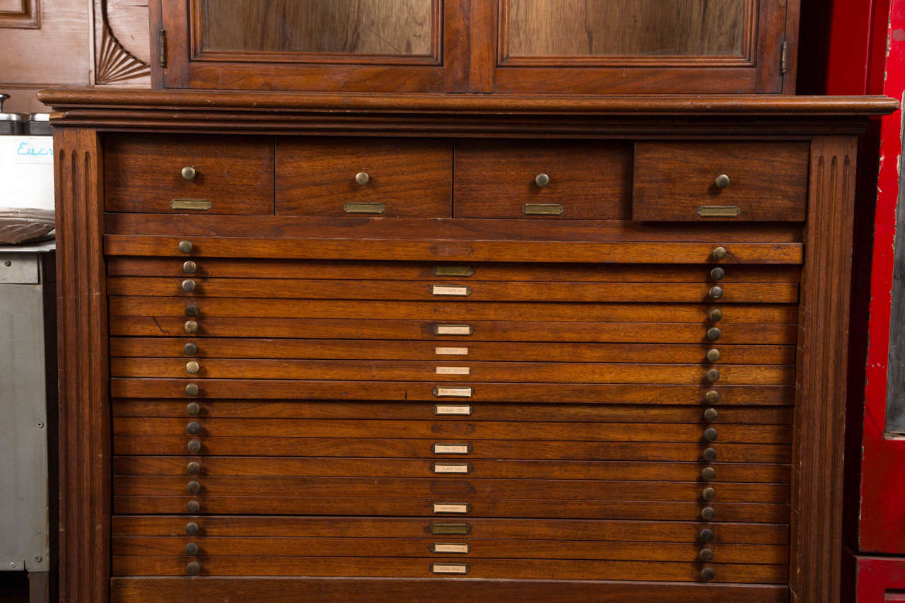 Wooden Map Cabinet With Glass Doors For Sale At 1stdibs
