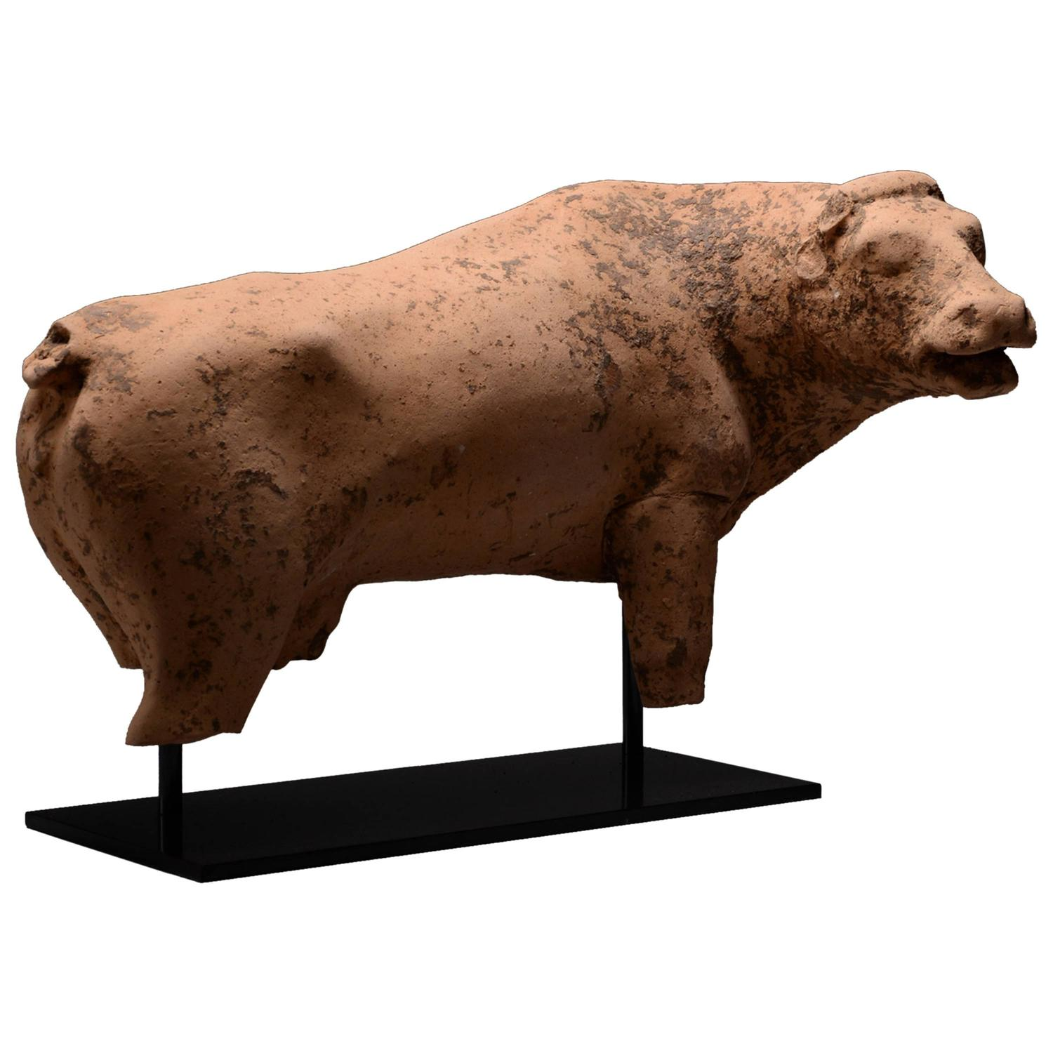 Ancient Greek Statues For Sale Ancient Greek Terracotta Cow Sculpture 450 Bc For Sale