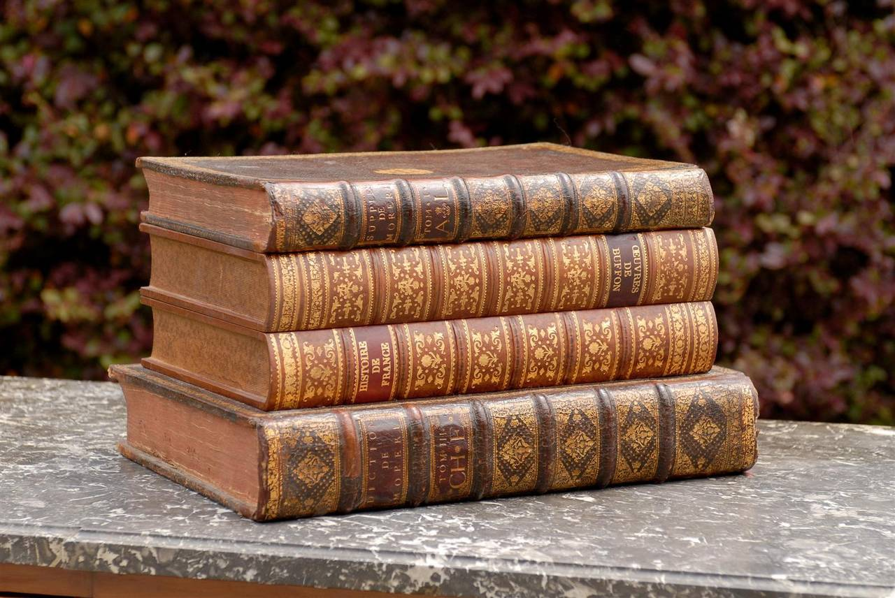 Leather Faux Book Box At 1stdibs