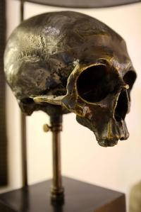 Lamp Skull in Brass with Black Transparent Shade and Skull ...