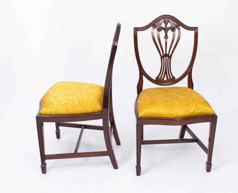 Vintage Grand Set Ten Hepplewhite Shield Back Dining