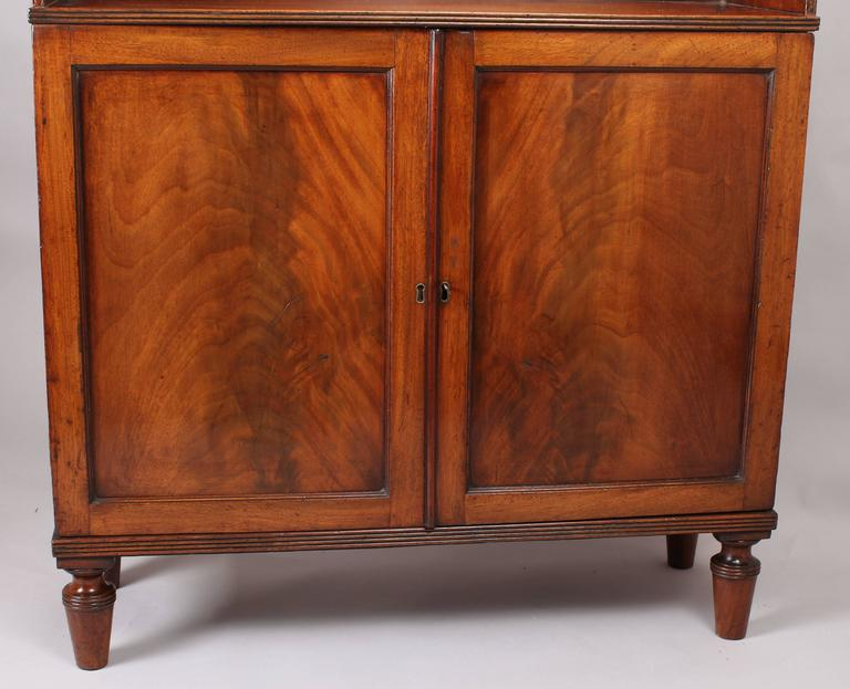 George Iv Period Mahogany Bookcase Cabinet For Sale At 1stdibs